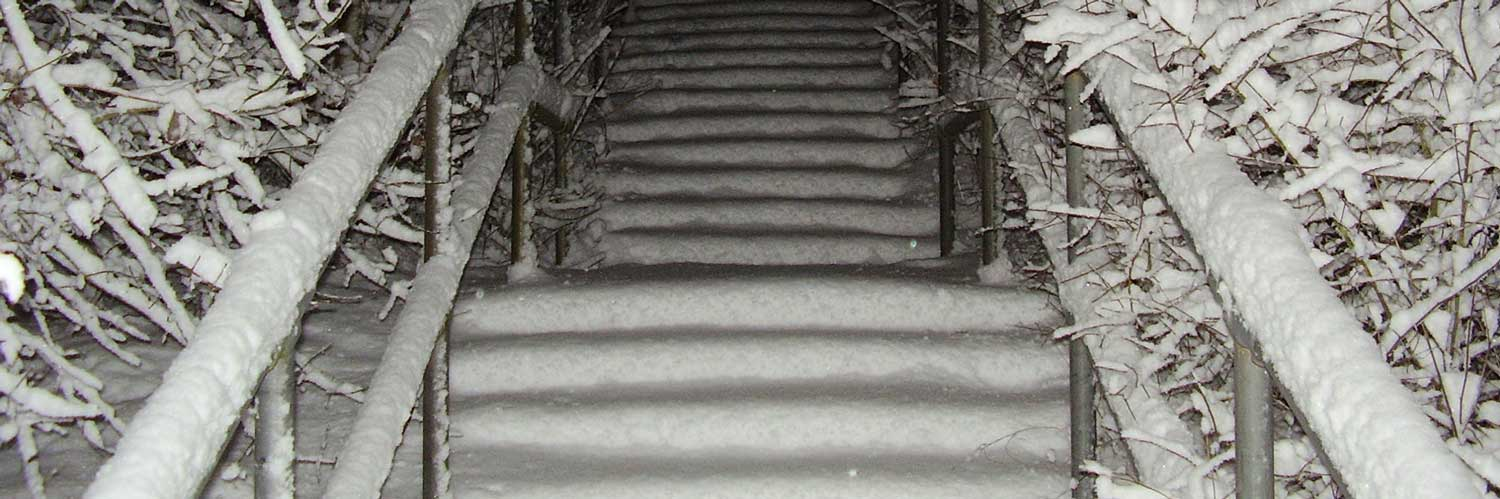 stairs covered in snow